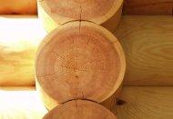 Способы защиты древесины
